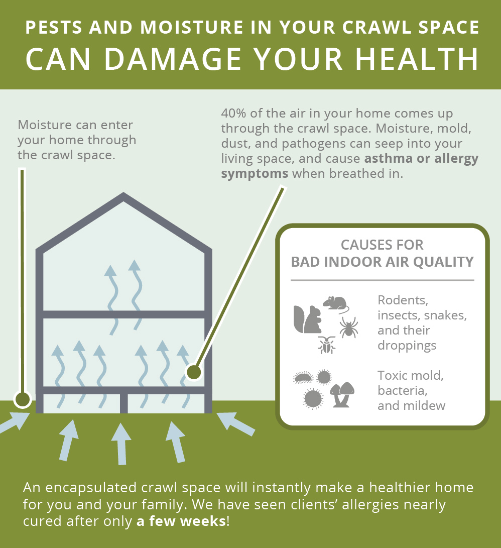 Pests and moisture cause health issues